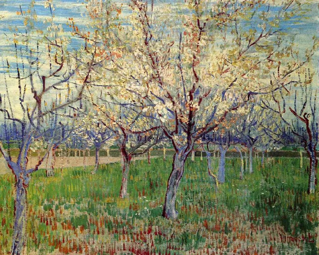 orchard-with-blossoming-apricot-trees-1888