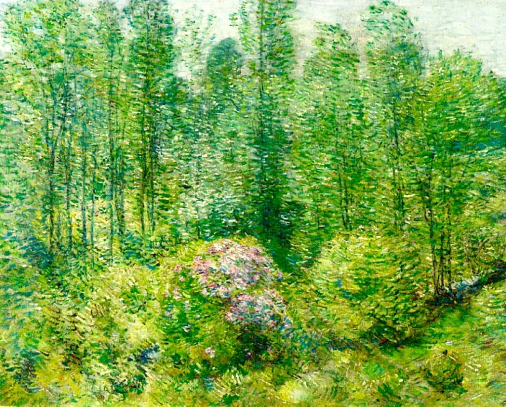 Arts Everyday Living: An Impressionist Spring in January--In the Flowering Woods