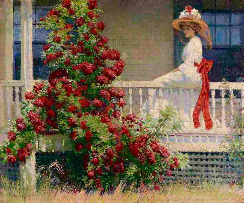 Arts Everyday Living: Summer in March--Crimson Roses, Impressionist Sunlight