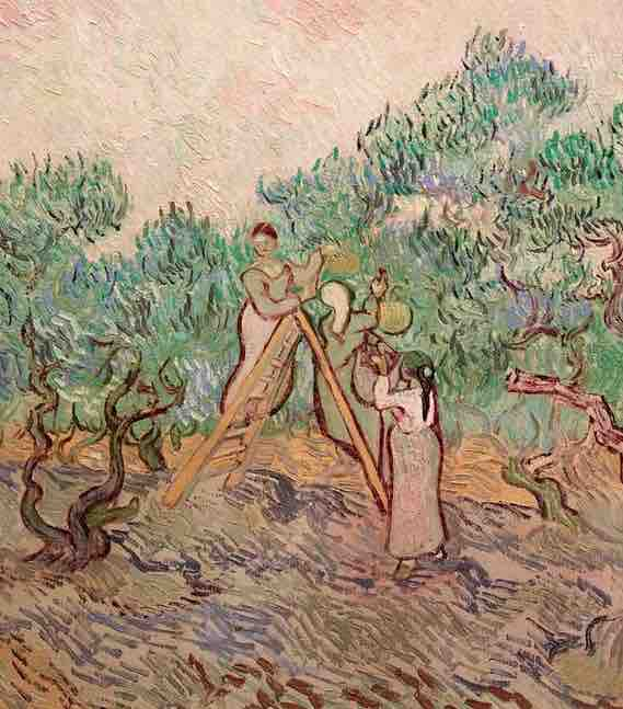 Arts Everyday Living: Van Gogh & the Olive Orchard---the Art of the Faraway