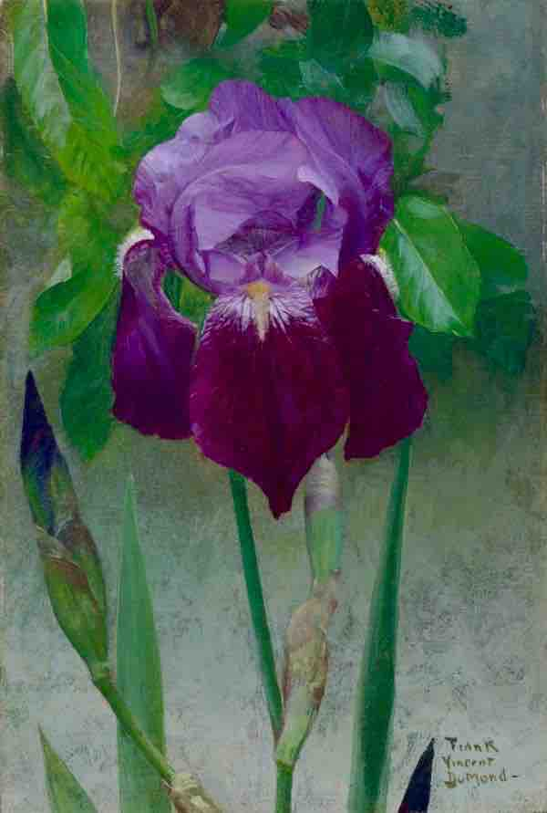 Frank Vincent DuMond, Iris, c. 1902, oil on canvas mounted on board, Museum of Fine Arts, Richmond, Virginia