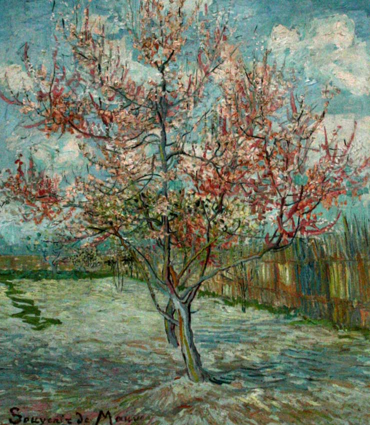 vangogh-peachtree
