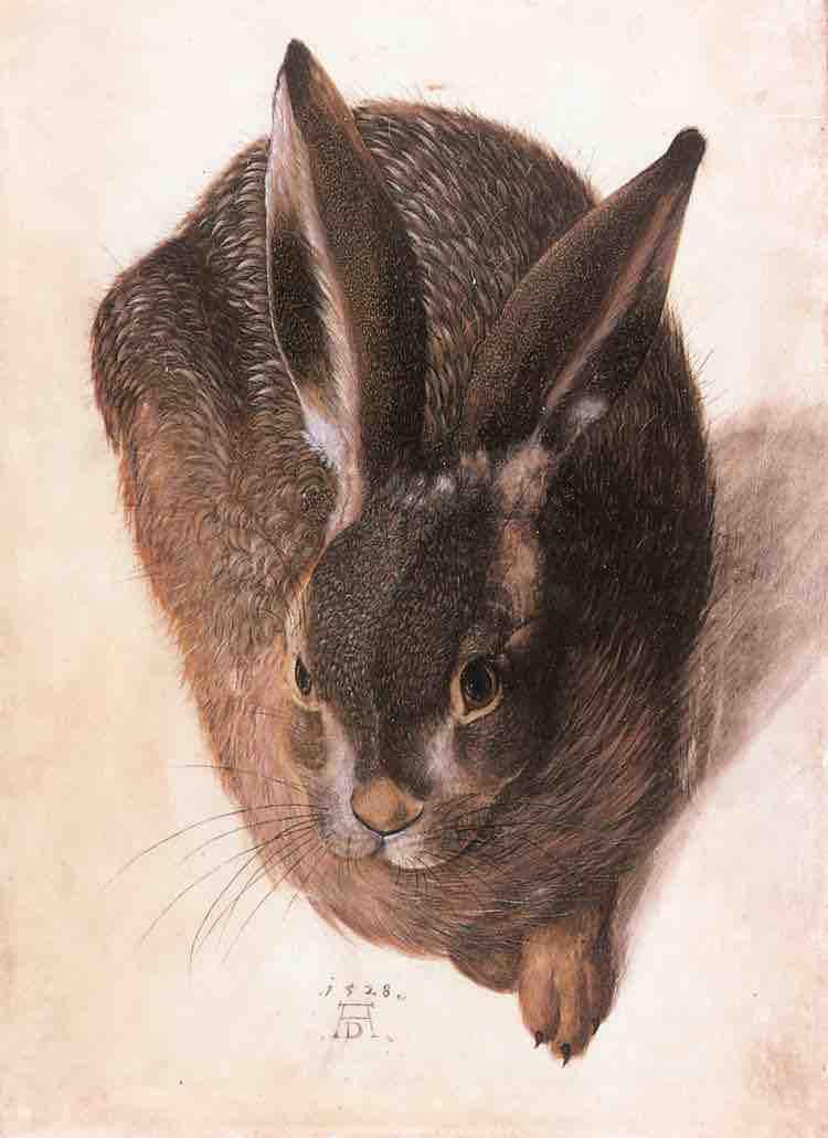 Hans Hoffmann, Hare